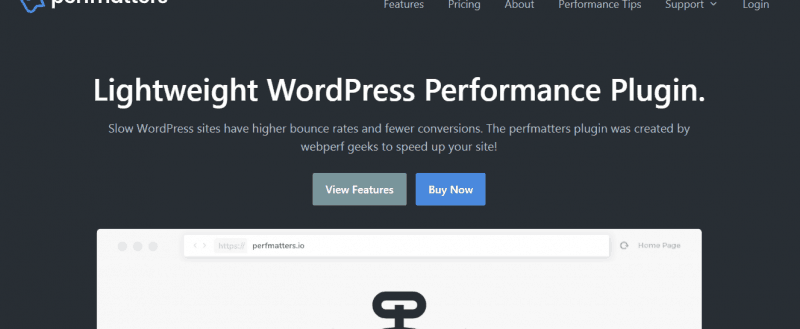 perfmatters Review: The #1 Plugin For WordPress Optimization!
