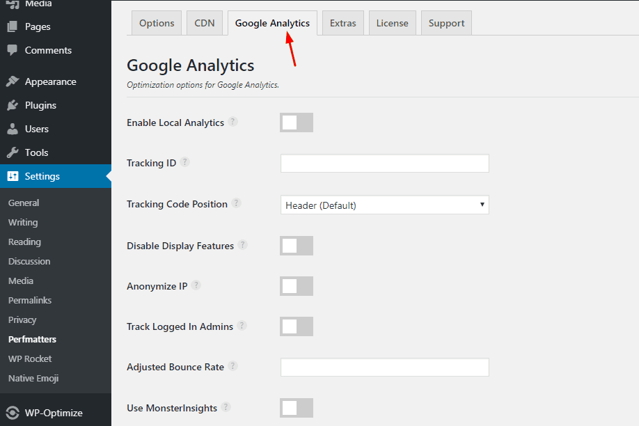 perfmatters analytics settings